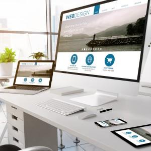 responsive-web-design-services-366tbitwglf1s37ut9hxc0.jpeg